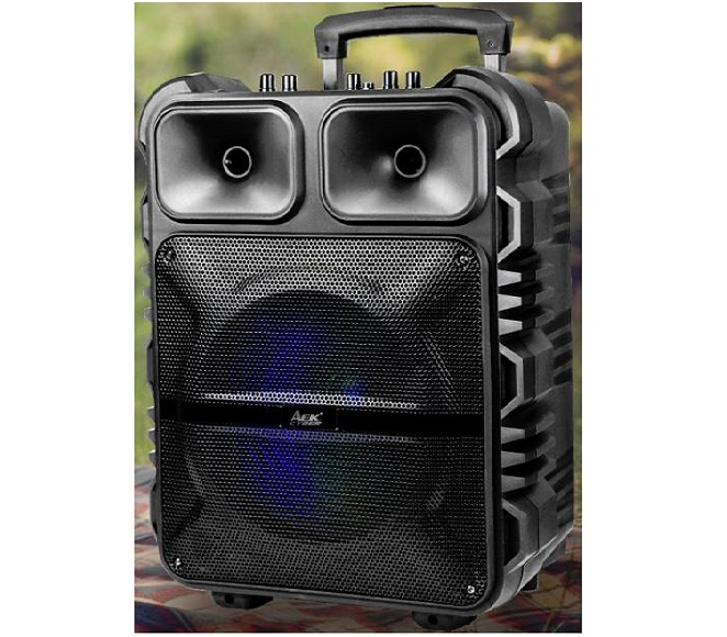 SPEAKER BLUETOOTH S-11201 WITH MICROPHONE (BLACK)